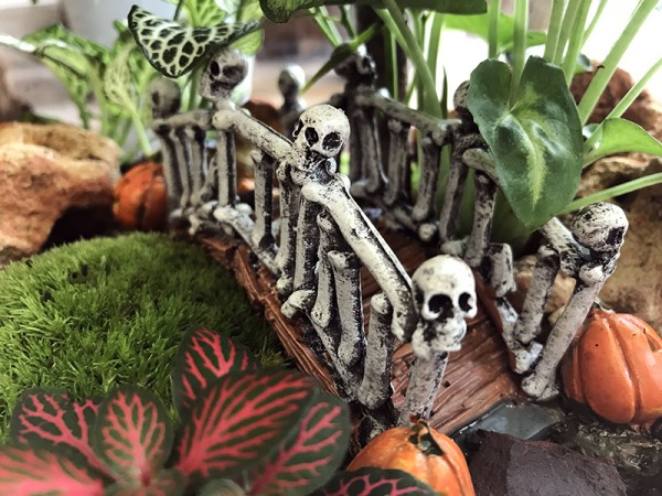 Terrarium Halloween - Petit monde