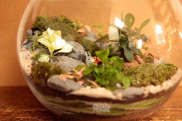 Bulle de verdure Totoro ©Petit monde