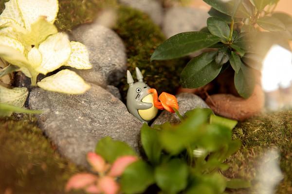 Petit monde de Totoro ©Petit monde